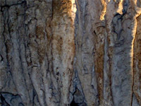 Cuevas del negro en Opala